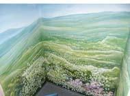 Illusionsmalerei, Wandbilder